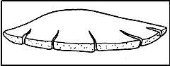 ГОСТ 310.3-76 Цементы. Методы определения нормальной густоты, сроков схватывания и равномерности изменения объема (с Изменением N 1)